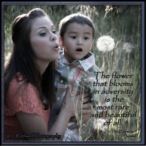 Flower that blooms in adversity